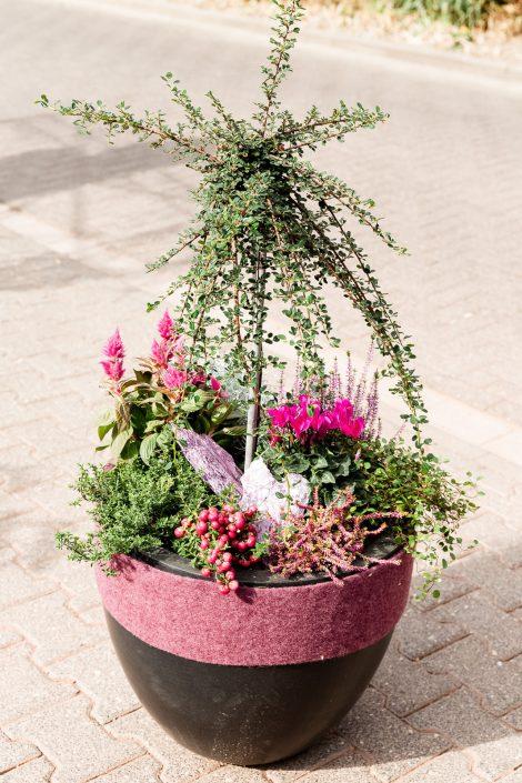 Bepflanzter Blumenkübel